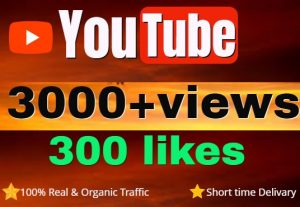 Add High-Quality Non-Drop 3000+ Youtube Views & 300 Likes for Growth Your Channel