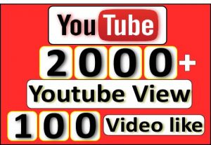 Get 2000+ Youtube View With 100+ Youtube Video like For $5