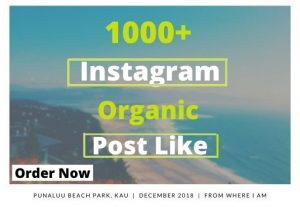 I will Provide 1000 organic USA Instagram post likes.