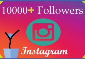I will grow 10000Instagram followers with 100% Non Drop guaranteed & Real High Quality