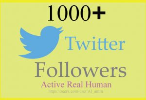 Real & Organic High Quality 1000+ Twitter Followers
