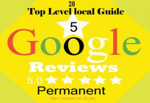 I will provide 20 permanent 5-star Google reviews for your website