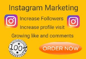 I will do instagram marketing, promotion and