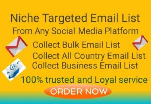 I will Provide Nice Targeted Email Clean and Verified List according To Customer's Desire