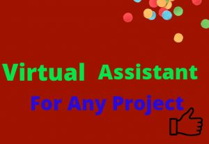 I Will Be Your Virtual Assistant For Any Project Any Time