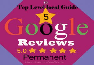 I will provide 30 permanent 5-star Google reviews for your website