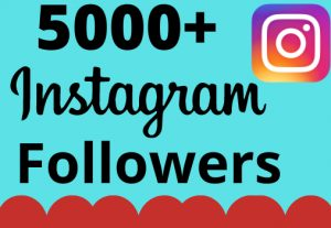 I will add 5000+ real and organic Instagram followers for your business