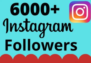 I will add 6000+ real and organic Instagram followers for your business