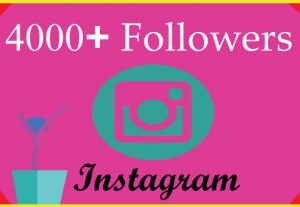 I will grow 4000 Instagram followers with 100% Non Drop guaranteed & Real High Quality