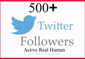 Real & Organic High Quality 500+ Twitter Followers