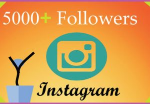 I will grow 5000 Instagram followers with 100% Non Drop guaranteed & Real High Quality