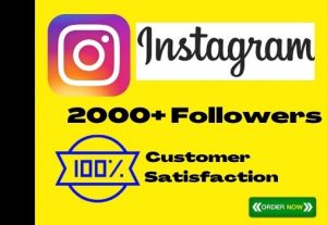 I Will Add 2000+ Instagram Followers Instant, No-Drop, Active User And Lifetime Guaranteed
