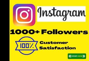 I Will Add 1000+ Instagram Organic Followers, No-Drop, Active User And Lifetime Guaranteed