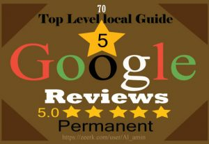 I will provide 70 permanent 5-star Google reviews for your website