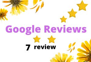 I will Provide you 7 Google review Permanent
