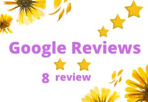 I will Provide you 8 Google review Permanent