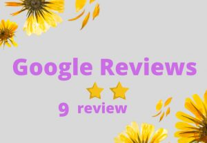 I will Provide you 9 Google review Permanent