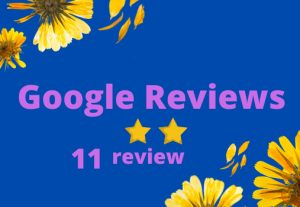 I will Provide you 11 Google review Permanent
