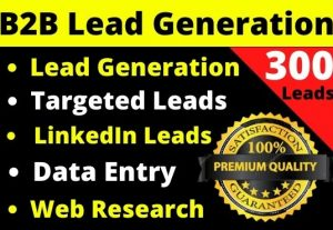 Provide you 300 b2b leads for your business