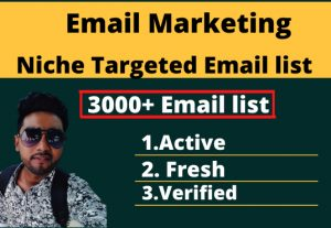 I will provide a 3000 email list for any niche and country.