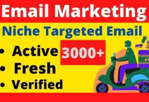 I will provide you 3000+ Fresh And Active Bulk Mail List