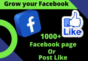 I will provide 1000+ Real Facebook page or post likes.