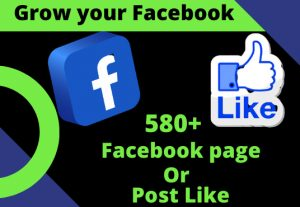 I will provide a 580+ Facebook page or photos Real Like.