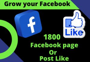 I will provide 1800 Real Facebook page or post like.