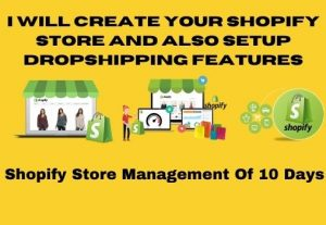 I will set up your customized and professional Shopify store