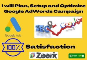 I will set up and customized and professional google AdWords campaign