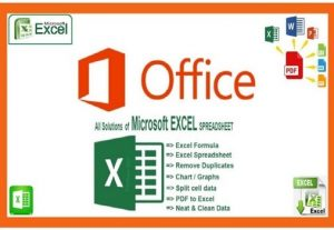 I will do Microsoft Excel spreadsheet, charts, graphs, table, formula, data entry on Microsoft office