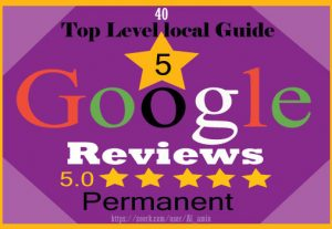 I will provide 40 permanent 5-star Google reviews for your website