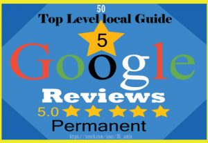 I will provide 50 permanent 5-star Google reviews for your website