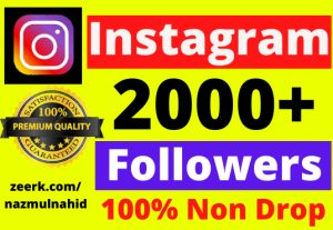 You will get 2000+ Non Drop Instagram Followers