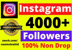4000+ Non Drop 100% Real Instagram Followers