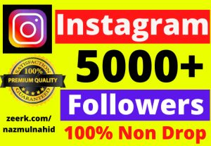 Provide you 5000+ Non Drop and Real Instagram Followers