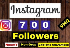 Get Instant VHQ 700+ Instagram Followers,100% Real, Non-Drop, Lifetime permanent