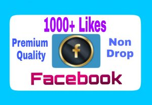 Organic, Premium Quality  and Non Drop 1000+ Facebook Post Likes Add Your Facebook Post