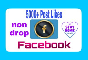 Add 5000+ Premium Quality,  Organic and Non Drop Likes to Your Facebook Post