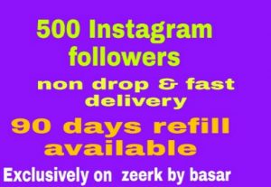 500 Instagram followers non drop and fast delivery