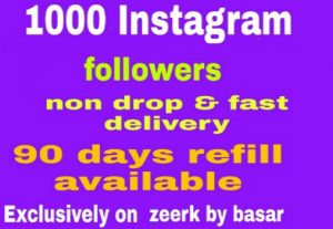 1000 Instagram followers non drop and fast delivery