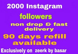 2000 Instagram followers non drop and fast delivery