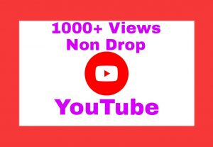 Add 1000+ Organic Non Drop Views on Your YouTube Post