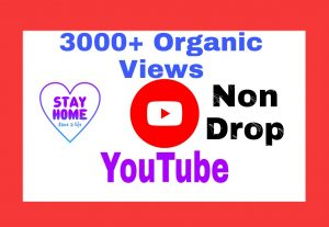 Add 3000+ Premium Quality and Non Drop  Views on Your YouTube Post