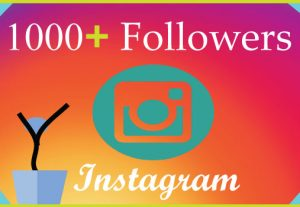 I will grow 1000 Instagram followers organically