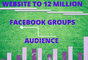 I will deliver your website to 12 miilion group audience