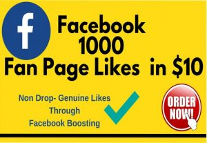 I Will Provide 1000 Facebook Fan Page Likes In $6