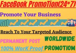 I will do facebook promotion and marketing of any business product worldwide
