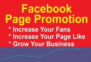 I will do organic facebook promotion in 24 hour