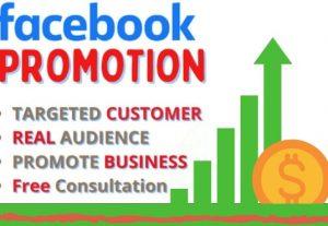 I will facebook advertising, ads, marketing for social media
